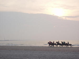 horse riding. Horse Riding on the beach